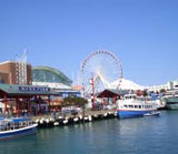 Navy Pier Cruises Chicago